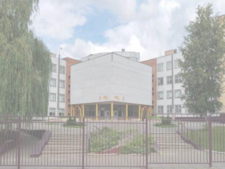 Средняя школа № 217